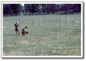 Two researchers working on the grasslands